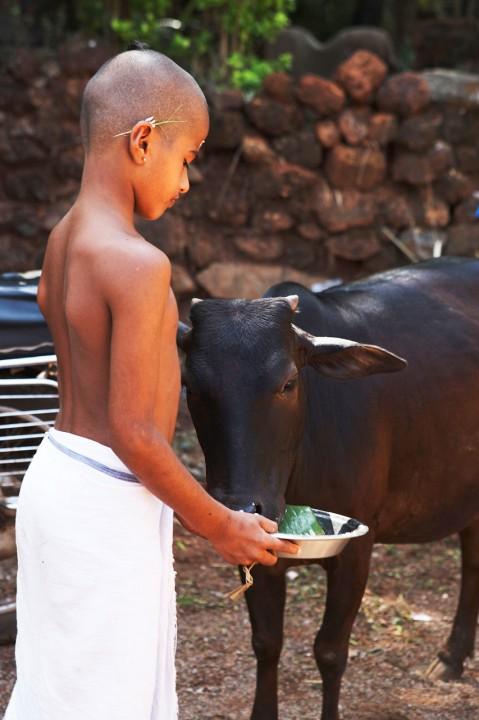 Indien, Karnataka, Gokarna, heiliger Ort, Brahmanen, Gelehrte, Strasse