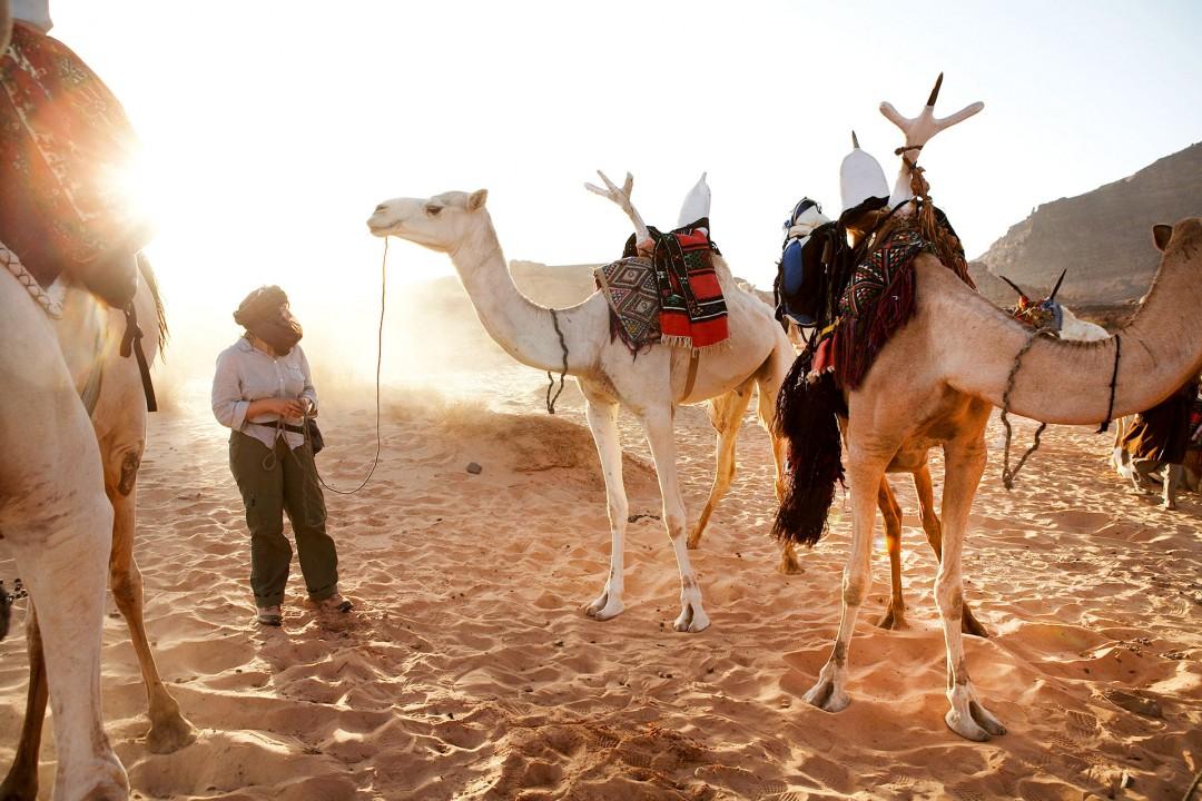 Nord Afrika, Die Sozialistische Libysch-Arabische Volks-Dschamahirija, in der amtlichen Kurzform Libysch-Arabische Republik oder kurz Libyen, Todrart Akakus Gebirge, Kameltrekking, von Adad – Aouiz- Telhedene- Sougat ,Tin Lalane Tuarek, Kamele, Kamel, Landschaft, Sand, schroffe Felsen, Wueste, Reisegruppe (alle modelreleased ), Reiten, Trekking, Wandern, Dromedar, Rock formations, Akkakus range, Libya, Tadrart AcacusAkkakus-Gebirge, Der Tadrart Acacus  ist ein Gebirge im Südwesten Libyens Es befindet sich unweit der libyschen Stadt Ghat und in der Nähe des Felsmassivs Idinen. Die Akkakus bzw. das Akkakus-Gebirge ist eine Wüstenlandschaft in Libyen. Wüste Bergen, Steinen, Sand und Duenen Felsmonumente, In Höhlen finden sich fruehgeschichtliche Gravuren von Elefanten ua aus der Zeit um ca. 4000 v.Chr, Die labyrinthische Bergwelt wird von Tuareg bereist bzw. bevoelkert,