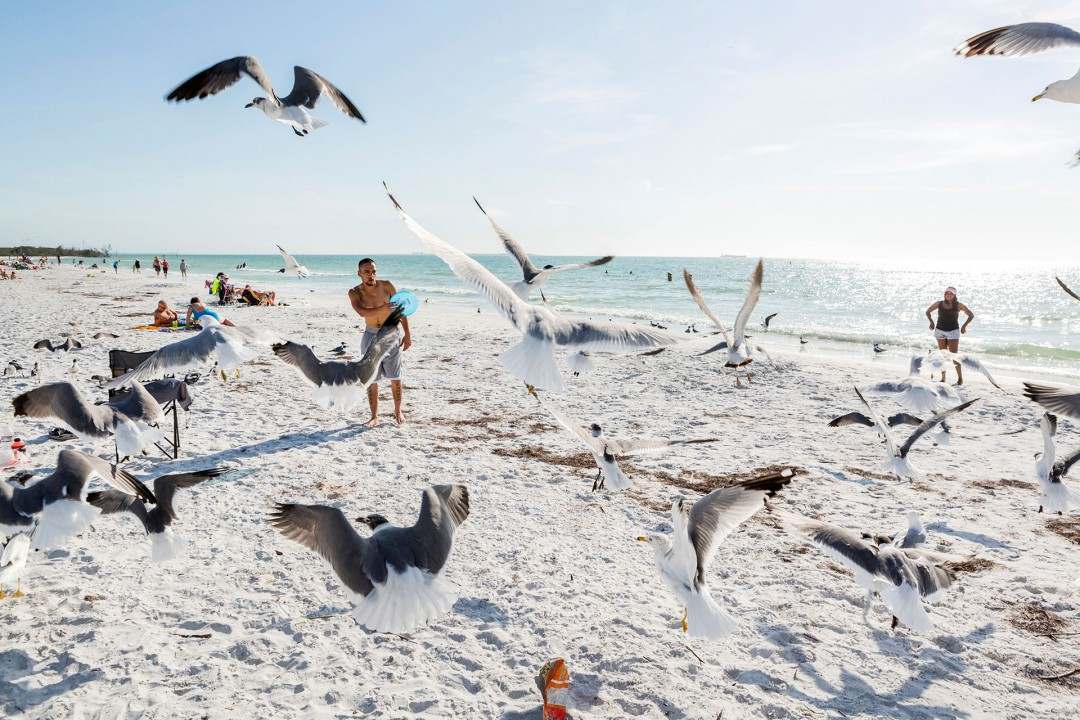 Reise Travel laif creative USA Amerika, United States of America, Florida, Golf von Mexico, Golfkueste, suedlich von Tampa, Fort de Soto Park & Beach: Sonnenbad Tourists on the Beach Strand