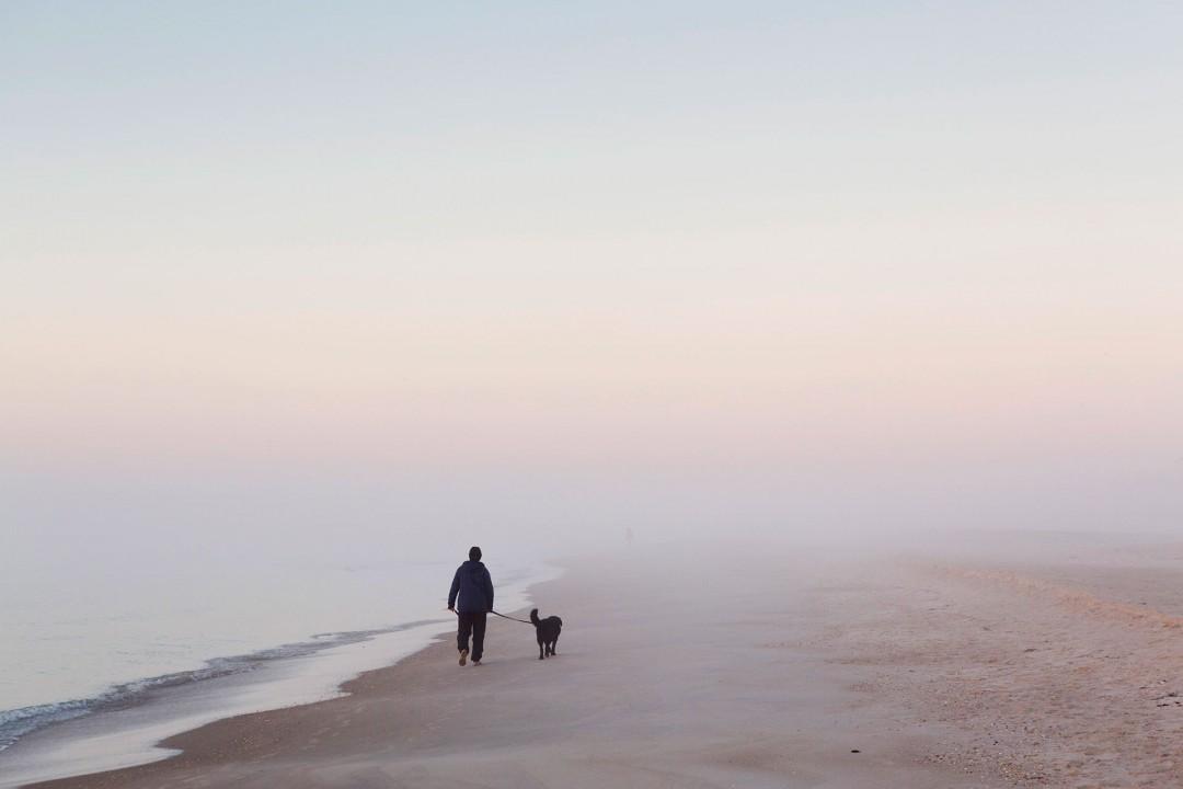 Reise Travel laif_creative USA, Amerika, United States of America, Florida, Der Norden, Apalachicola: Straende auf St. George Island, Golf von Mexico, Sonnenaufgang am Meer Spaziergang mit Hund