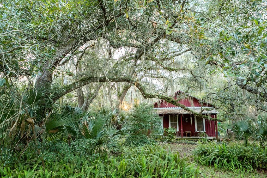 "Reise Travel laif_creative USA, Amerika, United States of America, Florida, der Norden, bei Gainesville, Micanopy: Floridas (Staat) aeltester Ort. ""Spanish Moos"" Haus"