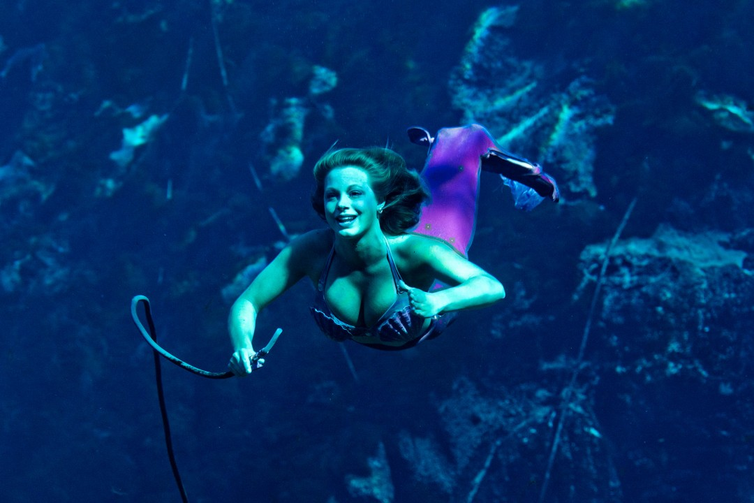 Reise Travel laif_creative USA, Amerika, United States of America, Florida, Der Norden, Golf von Mexico‎ Weeki Wachee Springs/Spring Hill: Seejungfrauen-Show Mermaid Show Unter Wasser