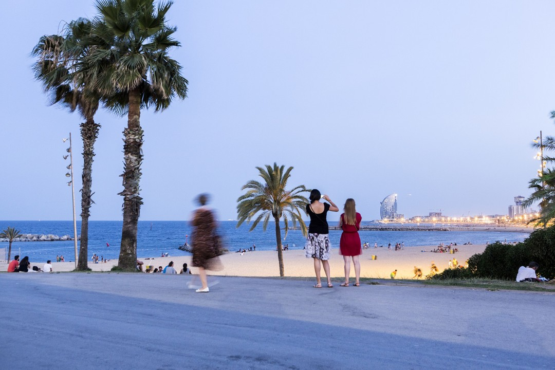 Europa Spanien Katalonien Barcelona La Barceloneta Strand beim Port Olimpic Platja Somorrostro Mittelmeer Palme