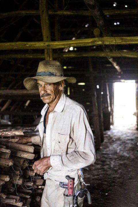 Antillen, Karibik, Cuba, Kuba, Republica de Cuba, Sozialismus, Tabak Farm an der Strasse von Vinales nach Pinar de Rio, Tabakanbau, Tabak Farmer