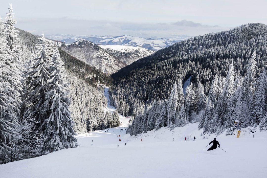 Serbien, Balkan, Kopaonik, Skigebiet, beim Hotel Grand direkt am Skigebiet, Lifte, Sessellifte, Pisten, Skifahren, Abfahrtsski, Schneebedeckt, Tannen,