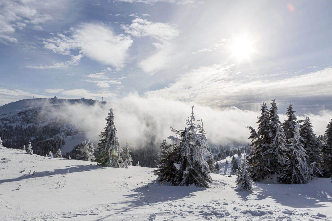 Serbien, Balkan, Kopaonik, Skigebiet, beim Hotel Grand direkt am Skigebiet, Lifte, Sessellifte, Pisten, Skifahren, Abfahrtsski, Schneebedeckt, Tannen, Sonne, blauer Himmel