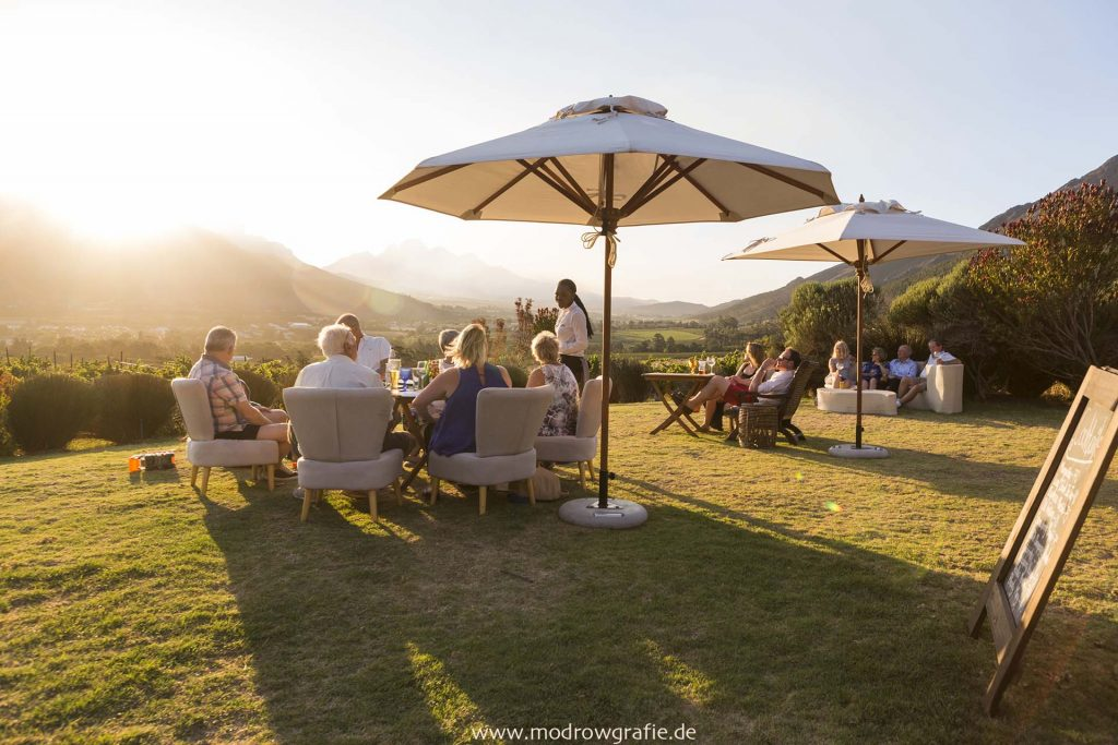 Suedafrika, Weingut bei Franschhoek, Landwritschaft, Wein, Weinbau, Weinanbau, Gutshaus, Landschaft, Afrika, Engl:  Winery near Franschhoek, Western Cape, South Africa, Landscape, Dieu Donne Vineyards, Restaurant Roca, Guests, Garden, Sunset,