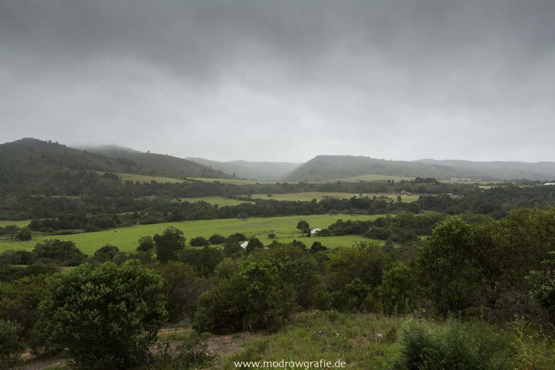 Suedafrika, Afrika, Garden Route, Plettenberg Bay,  Reise, Landschaft, Engl: Southafrica, Western Cape, Landscape, Gardenroute, Travel, Howberry Hills, Farm, Airbnb, view from the Block House, Terasse,