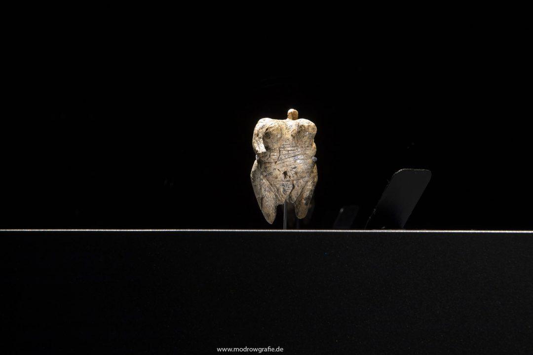 Europa, Deutschland, Donau, Baden-Wuerttemberg, Blaubeuren:15.Urgeschichtliches Museum (URMU, zentrales Museum für die Fundregion der UNESCO-Welterbestätten