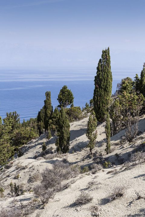 Europa, Griechenland, Ionisches Meer, Höchste Erhebung ist mit 130 m der Merlera im Norden, Othonische oder Diapontische Insel Errikousa, Erikoussa, Großgemeinde Korfu, Inselgruppe,    engl: Greece, Island of Errikousa,